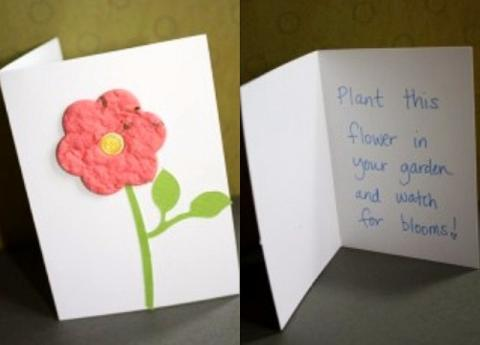 Самый необычный цветок — Открытка сестре на день рождения