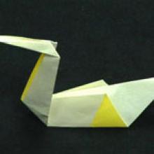 оригами Лебедь Австралии из бумаги